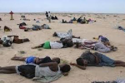 Bodies of Ethiopian refugees strewn on the Yemeni cost of Khor Omariah
