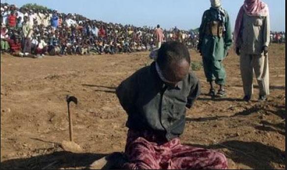 State Terrorism in Ogaden, Ethiopia | Ethiopian Review