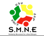 Solidarity Movement for a New Ethiopia (SMNE)